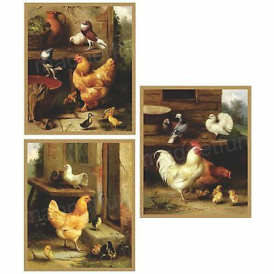 CHICKEN & ROOSTER Fridge Magnets - Set of 3 Diff -Large