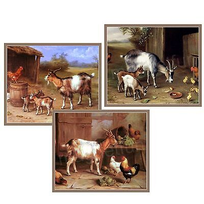 GOATS & CHICKENS Refrigerator Magnets - Lot 3 Dif - LG