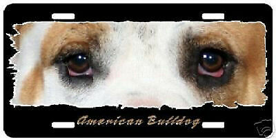 "American Bulldog "" The Eyes Have It "" License Plate"
