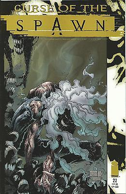 Curse Of The Spawn #22 (Image)