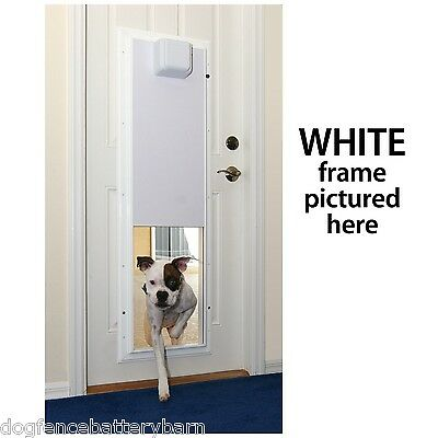 Plexidor Large Electronic Dog Door Unit up to 125 lbs.