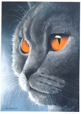 Large British Blue Cat Print From Original Painting By Suzanne Le Good