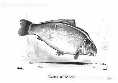 HEATHER the LEATHER Classic Famous Carp Pencil Drawing Print Less than 12 left