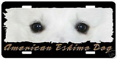 """American Eskimo Dog """" The Eyes Have It """"  License Plate"""