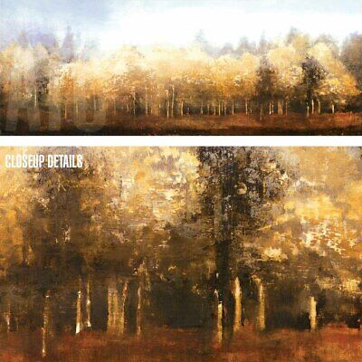 """BARK TREES FOREST LANDSCAPE CANVAS 36W/""""x36W/"""" WATERFALL by MICHAEL O/'TOOLE"""