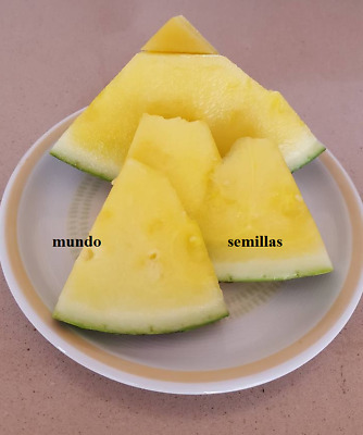 SANDIA AMARILLA  yellow  watermelon 50 semillas seeds