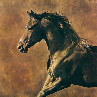 """STALLION COLT HORSE THOROUGHBRED MARE CANVAS 32/""""x48/"""" FABLE by MAEVE HARRIS"""
