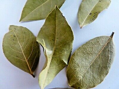 LAURIER FEUILLE 8 g Plats et tisane .  (Bay leaves )