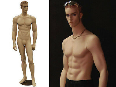 Fiberglass Male Dummy Mannequin Manikin Dress form Clothing Display #MD-CCT6F