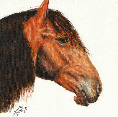 ★ Original Oil HORSE Portrait Painting PONY Artwork Canvas from Artist SIGNED