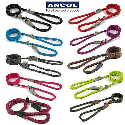 NEW Ancol Strong Nylon SLIP Rope Dog Lead Show Red Black Blue Pink Green Brown