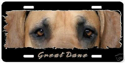 """Great Dane fawn uncropped """"The Eyes Have It """" Lic Plate"""