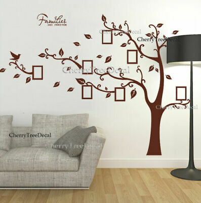Large Photo Frame Tree Birds Wall Stickers Art Decal Family Home Decor Removable