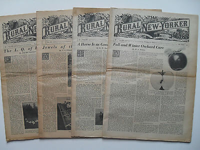 The Rural New Yorker Newspaper – Suburban Journal – Scarce 4 Issues, 1945