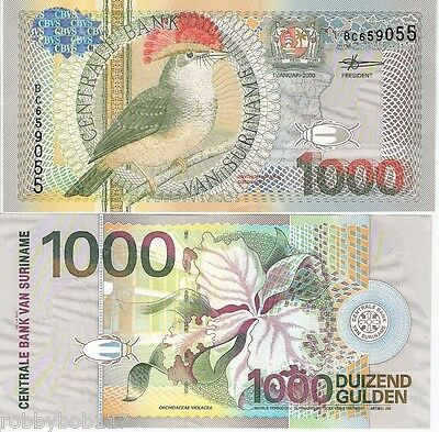 SURINAME 1000 Gulden Banknote World Money Currency South America BILL p151 Note