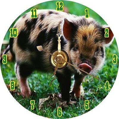 BRAND NEW Cutest Spotted Pig CD Clock