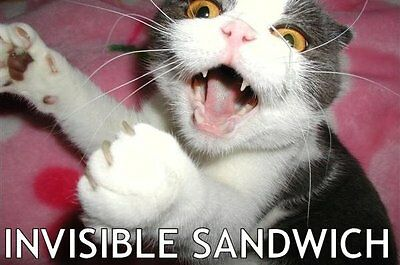 Funny  Cat Invisible Sandwich  Refrigerator / Tool Box / File Cabinet Magnet