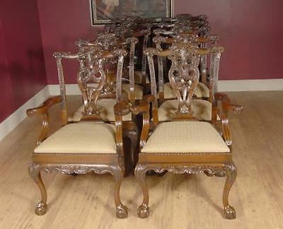 Set  Chippendale Mahogany Dining Chairs Diners English Furniture Ball and Claw