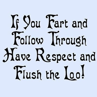 IF YOU FART AND FOLLOW THROUGH FLUSH THE LOO Funny Bathroom/Toilet Seat Sticker