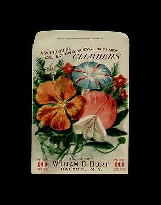 1910's WILLIAM D. BURT CLIMBERS LITHO. SEED PACKET 10 CENTS ~RARE~ ANTIQUE