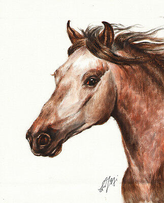 ★ Original Oil HORSE Portrait Painting PONY Art Artwork on Canvas Brown Signed