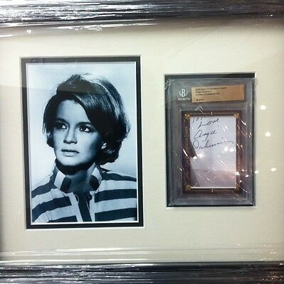 Hollywood Actress Legend  Angie Dickinson  Autograph Framed & Ready to Hang