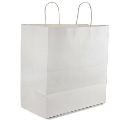25 count Paper Retail / Shopping Bag 14x10x16 WHITE with Rope Handle ROYAL