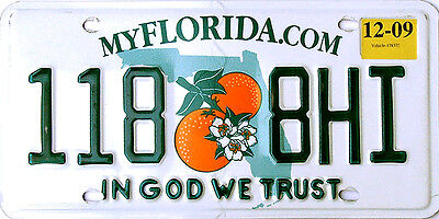 Florida IN GOD WE TRUST License Plate