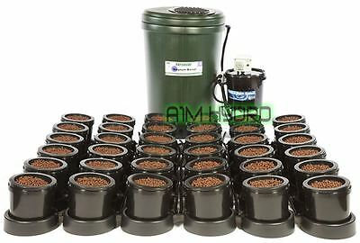IWS Flood And Drain Basic 36 Pot Complete System With Tank Hydroponics