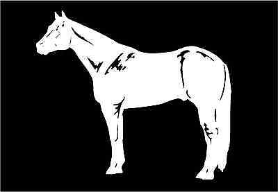 Quarter Horse Decal equestrian trailer vinyl car truck window sticker graphic