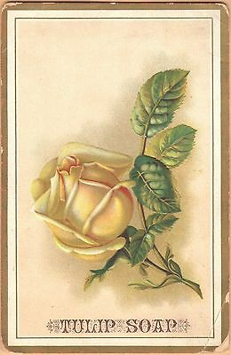 Large Embossed Victorian Trade Card-Tulip Soap-Jones & Co-Boston, MA-Yellow Rose