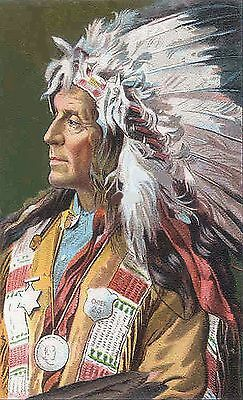 American Chief~counted cross stitch pattern #175~People Western Old West Chart