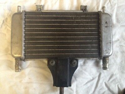 Gilera DNA 50cc 2t Radiator from a  2001 model