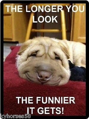 Funny Dog Humor The Longer You Look THe Funnier It Gets Refrigerator Magnet