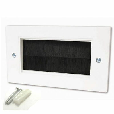 Cable Entry/Exit BRUSH Faceplate for Wall Outlet - Double Width White [006139]
