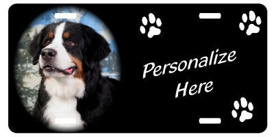 Bernese Mountain Dog Personalized License Plate