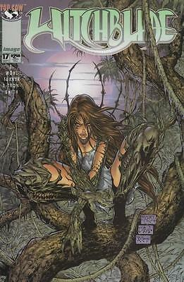 Witchblade 17 (NM)
