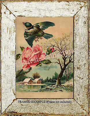 Pink ROSE Blue BIRD Tree Winter Country River Scene Antique Vintage ART PRINT