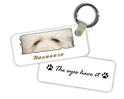 Havanese   The  Eyes Have It   Key  Chain
