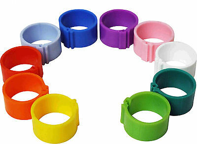 50 x 16 mm Clip On Leg Rings for Chickens, Ducks, Hens, Poultry, Large Fowl