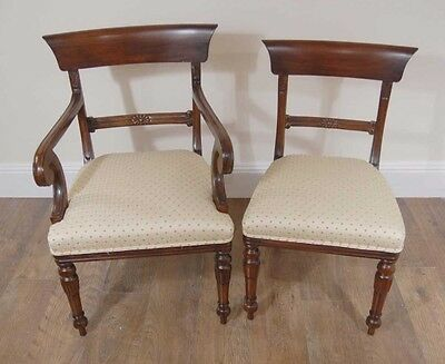 10 English Regency Trafalgar Dining Chairs