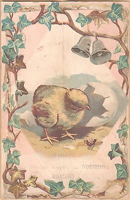 Victorian Trade Card-Gold Band Coffee-Chicago, IL-Newly Hatched Chick-Bells-Ivy