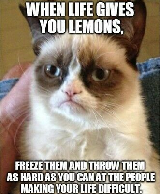 Funny Grumpy Cat When Life Refrigerator/Tool Box/File Cabinet Magnet