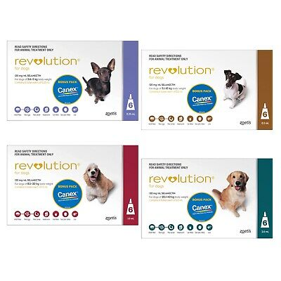 Revolution for Dogs Stop Fleas 6 pk FREE Canex All Wormer Small, Medium or Large
