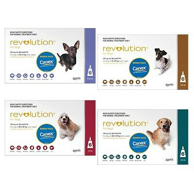 Revolution for Dogs Stop Fleas 6 pk - All Sizes + All Wormer + 2 BONUS Doses