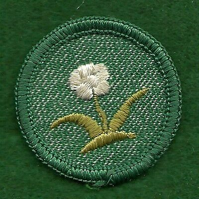 VINTAGE  GIRL SCOUT BADGE WATER FUN CHEESECLOTH BACK