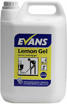 Evans Vanodine Lemon floor wall hard surface neutral Cleaning Gel Jell 5 Ltr