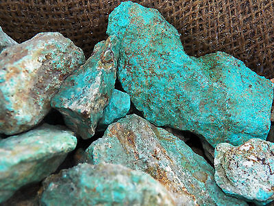 2000 Carat Lots of Turquoise Rough - Plus a FREE Faceted Gemstone