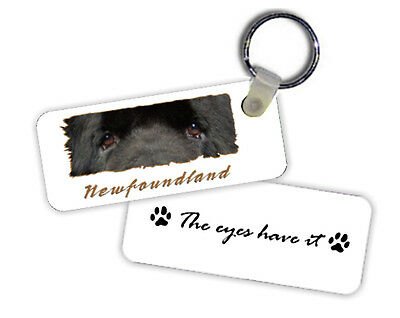 Newfoundland  The  Eyes Have It   Key  Chain