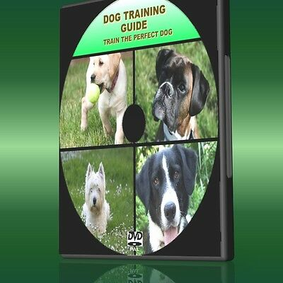 Train The Perfect Dog Dvd Video Guide All Ages & Breeds Dog Training Lessons New